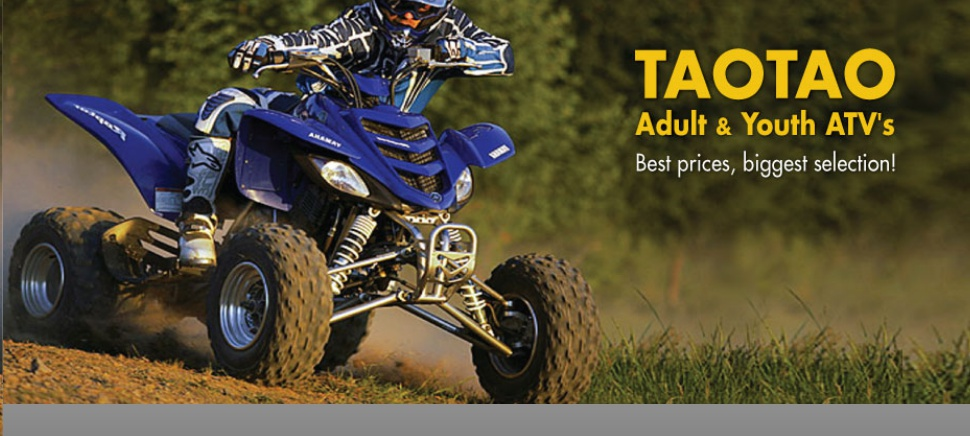 Tao Tao ATV APS